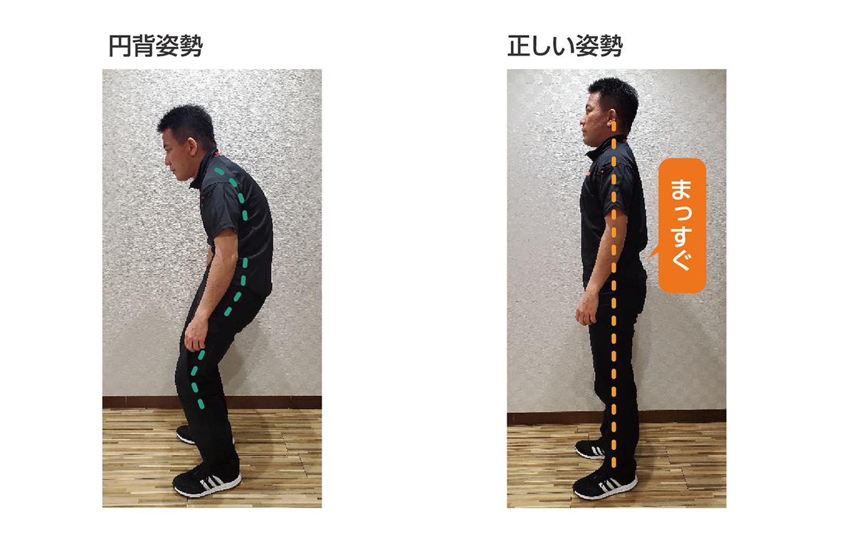 円背姿勢と正しい姿勢